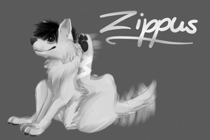 zippus-2.png